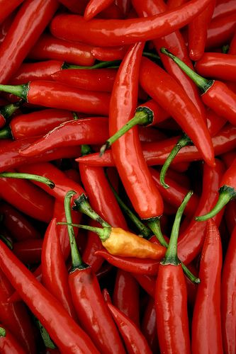 Hot Stuff!!!!!!!!!!!!!!!!!!lots of hotties  Chilli, jahlipinas  in the peppers garden.and so many others.Great for salsa ,soups and much more.Happycookdiva