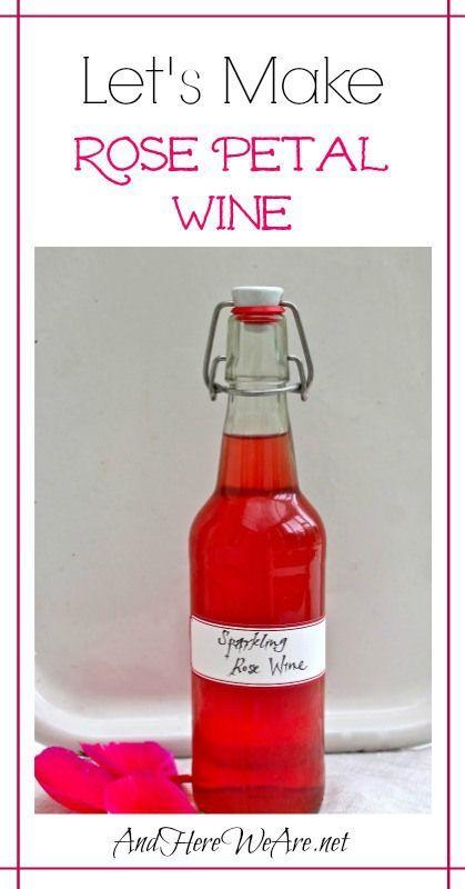 Sparkling Rose Petal Wine Rose Petals How To Make And