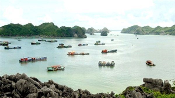 Hai Phong to promote Cat Ba tourism  VietNamNet Bridge – The northern port city of Hai Phong plans to focus on promoting the tourism potential of the Cat Ba archipelago, which is renowned for its diversity of tourism products.   #vietnamtravelnews #vntravelnews #vietnamnews  #traveltovietnam #vietnamtravel #vietnamtour