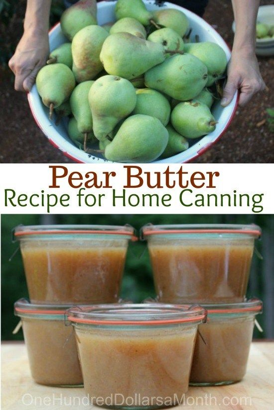 Pear Butter Recipe - Canning 101 - One Hundred Dollars a Month