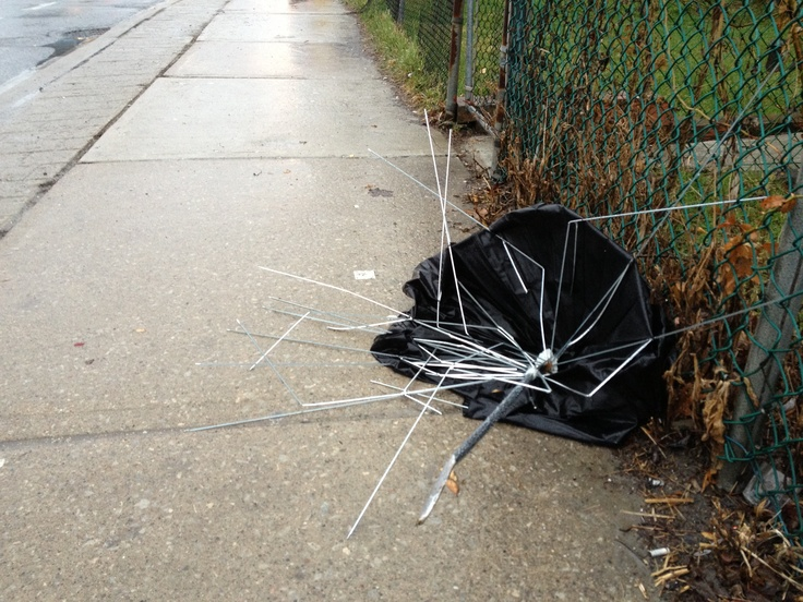 A windy morning in Toronto.  I willfully ignore the litter because of the hilarity of the situation.
