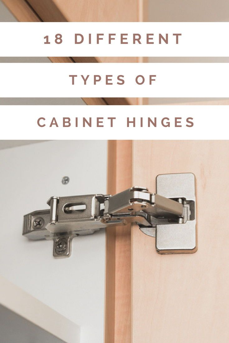 18 Different Types Of Cabinet Hinges Types Of Kitchen Cabinets Kitchen Cabinets Hinges Cabinet Hinges