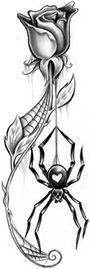 Black Widow/Rose Tattoo