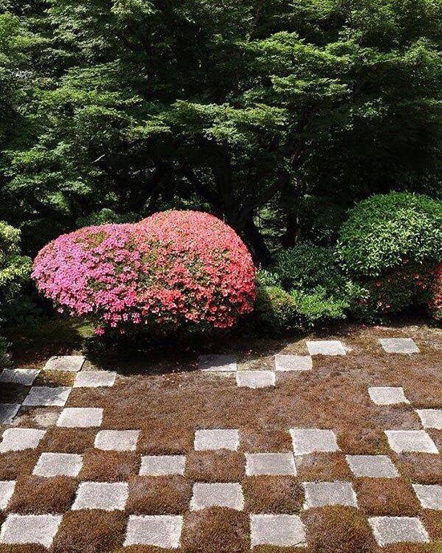 Best 25+ Modern Japanese Garden Ideas On Pinterest