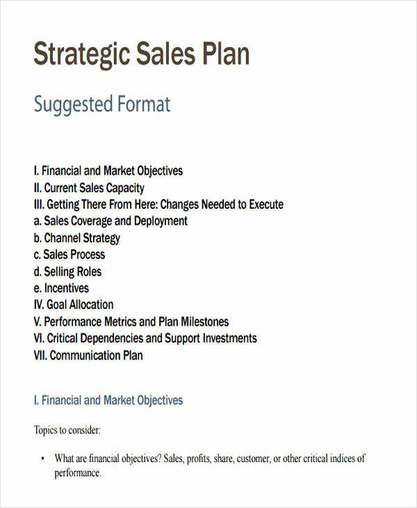 Strategic Sales Plan Template Best Of 27 Sales Plan Examples In
