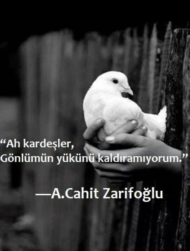 Ah kardeşler, Gönlümün yükünü kaldıramıyorum.   - Cahit Zarifoğlu