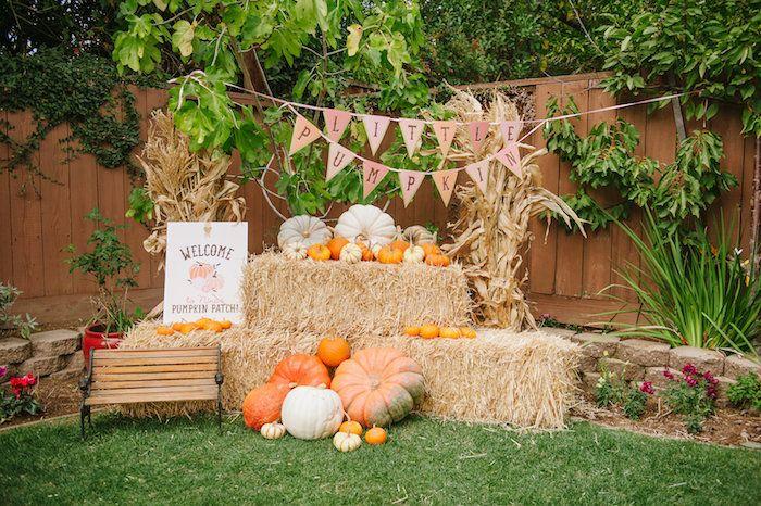 """Little Pumpkin"" Fall Picnic Birthday Party on Kara's Party Ideas | KarasPartyIdeas.com (52)"