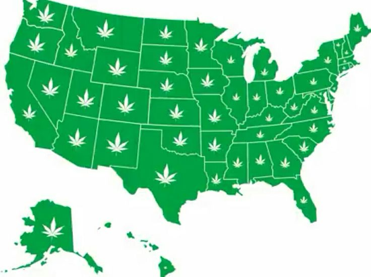 #LegalizeIt! in #ALL #50 #STATES!!!  #weedfinder http://m.huffpost.com/us/entry/us_5824d4ece4b034e389909d8e