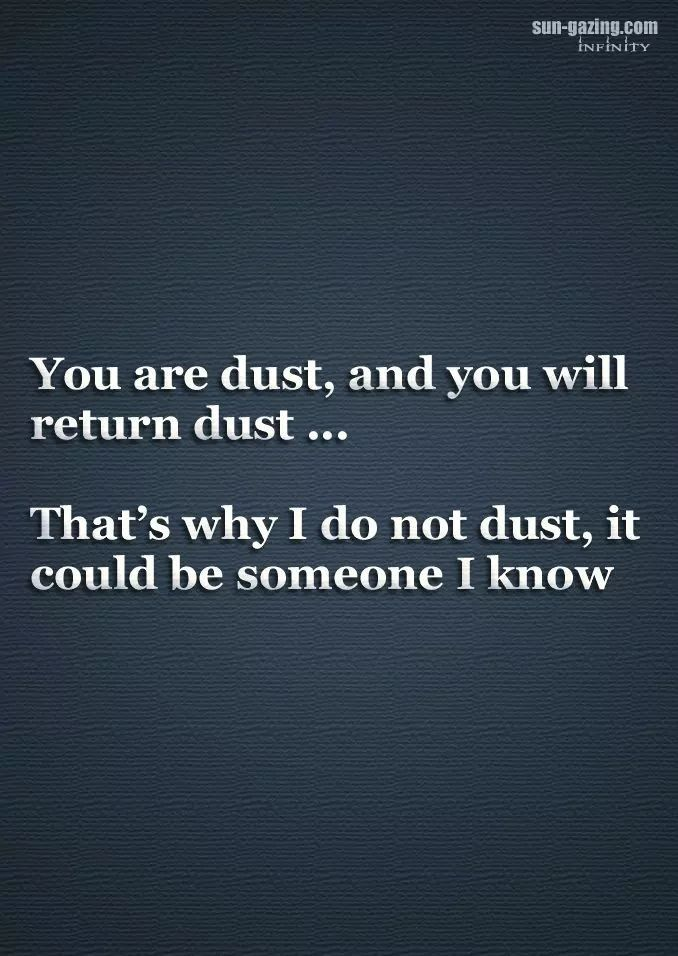 You Are Dust And You Will Return Dust Thats Why I Do Not Dust It Could Be Someone I Know Funny Quotes Funny Sarcastic Quotes