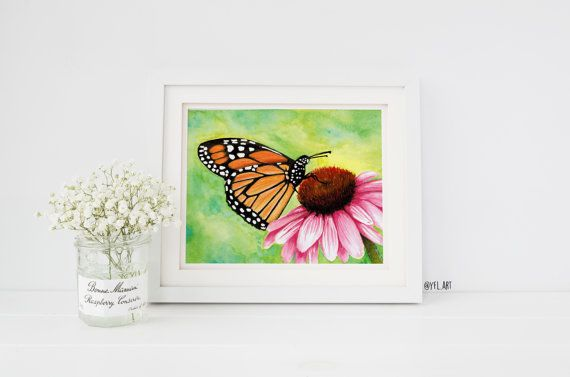Echinacea watercolor flower, pink daisy painting, Monarch butterfly, Watercolor painting, Art print