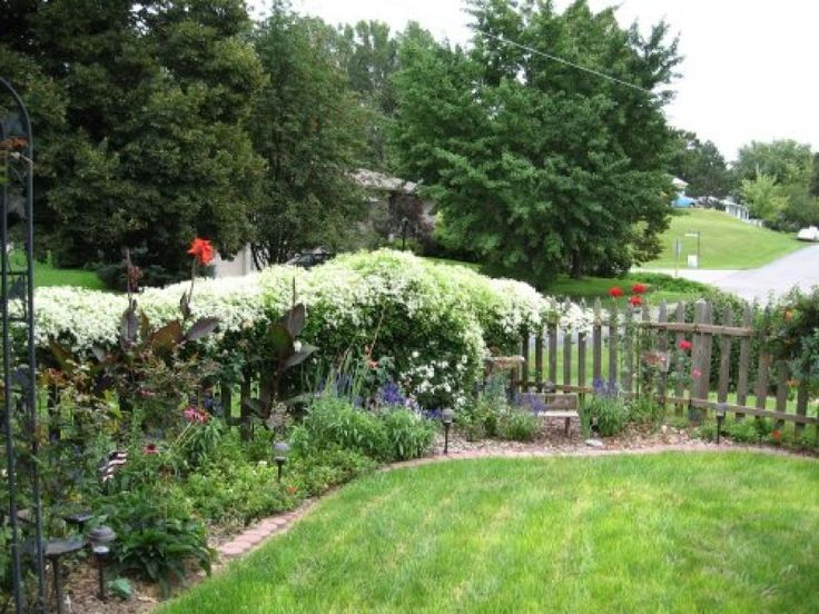 chain link fence landscaping ideas member inspired landscaping ideas garden ideas - Garden Ideas To Hide Fence
