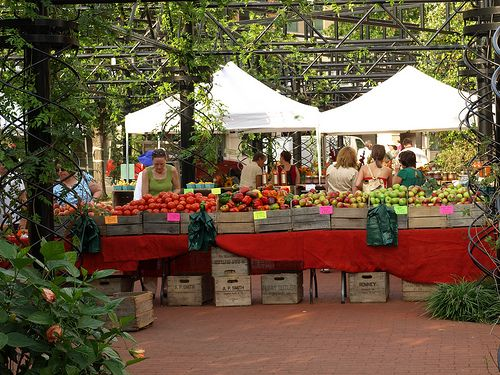Outdoor Farmers Markets on a Terrace | Outdoor Marketplace ...