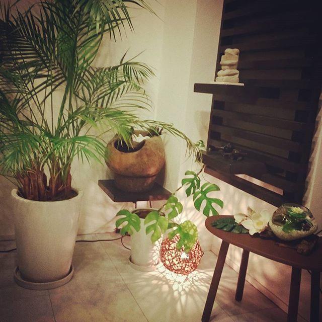 【yuuu_ruuu】さんのInstagramをピンしています。 《私の憩い&癒しスペース  疲れたときはここに…  ちょい自然を感じられるようにしてます 噴水⛲は、モーターですが(×_×) #癒し空間#グリーン#観葉植物#アレカヤシ#ヒメモンステラ#メダカ#アクアリウム#水槽#流木#ファウンテン#噴水#カエル#石像#置物#オブジェ#ラタンボールライト#照明#アジアン照明#アジアン#インテリア#アジアンインテリア#造作棚#オーダーメイド#リビング#living#おうち#マイホーム#myhome》