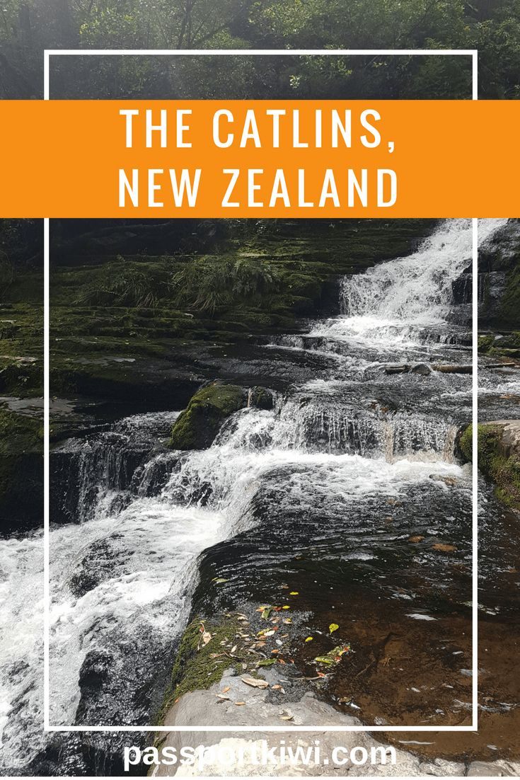 The Catlins, New Zealand! From waterfalls to quirky museums, The Catlins has it all. This travel blogger is luck enough to only live an hour away from this beauty.