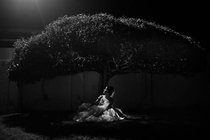 Свадебный фотограф Gabo Ochoa (gaboymafe). Фотография от 18.07.2016