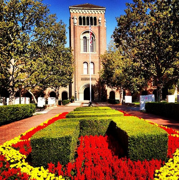 You irrationally expect all gardens to be Trojan colors, because those are clearly the most beautiful. | 27 Ways Going To USC Changed Your Life