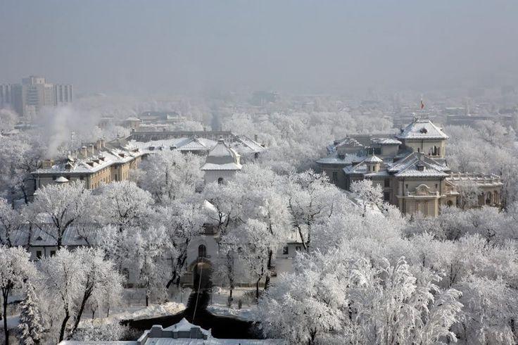 Bucuresti - Iarna la Palatul Cotroceni
