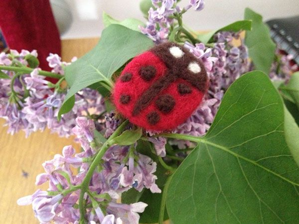 Ladybird made of wool