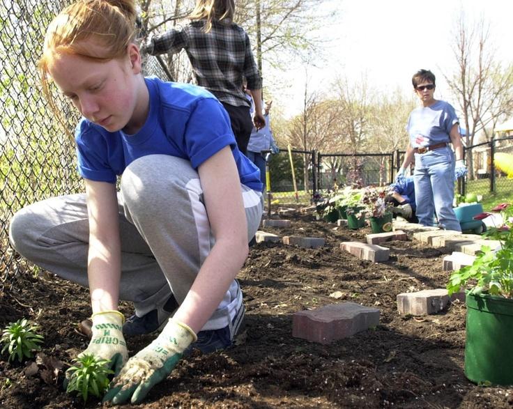 When To Start Planting the Garden