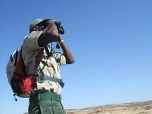 Save the Rhino Trust trackers use equipment such as cameras and binoculars to help them monitor and protect the black desert adapted black rhino.