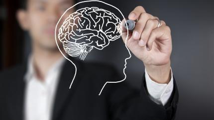 Alla kan stretcha sin hjärna och utmana den till nya förmågor och kunskaper. Det krävs fokus, träning och lust. Det menar barnläkaren Kristina Bähr.