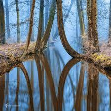 Image result for LARS VAN DE GOOR PHOTOGRAPHY ART