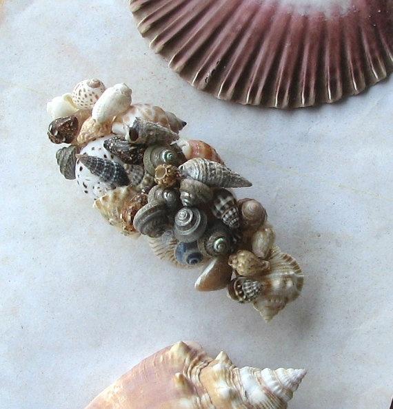 Seashell hair clip sea shells seashells driftwood for Seashells for hair