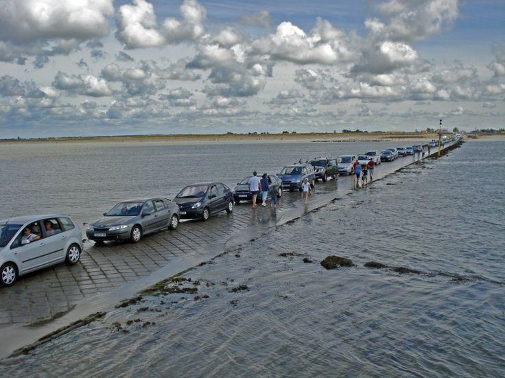 Passage du Gois entre l'Ile de Noirmoutier et le continent (low tide !) - Vendée - France