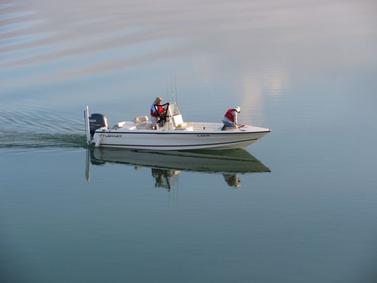 17 best images about talk of the florida gulf coast on for Florida gulf coast fishing charters