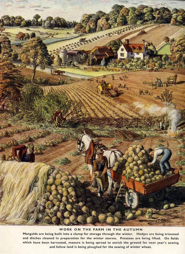hyperb0rean:  artamanen: S.R.Badmin (x) - illustrator of the English rural scene par excellence.
