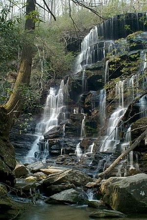 159 best images about sc on pinterest for Sumter national forest cabins