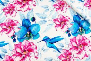 Dresówka pętelkowa PREMIUM-Kolibry 562
