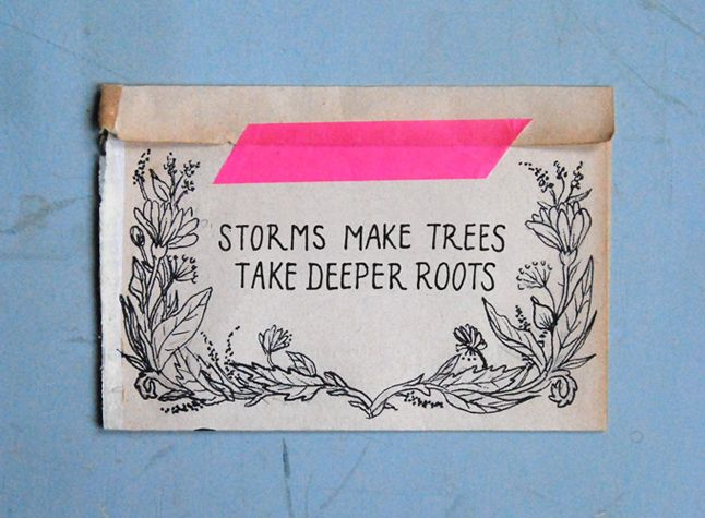 Storms make trees take deeper roots. www.anmulder.blogspot.com