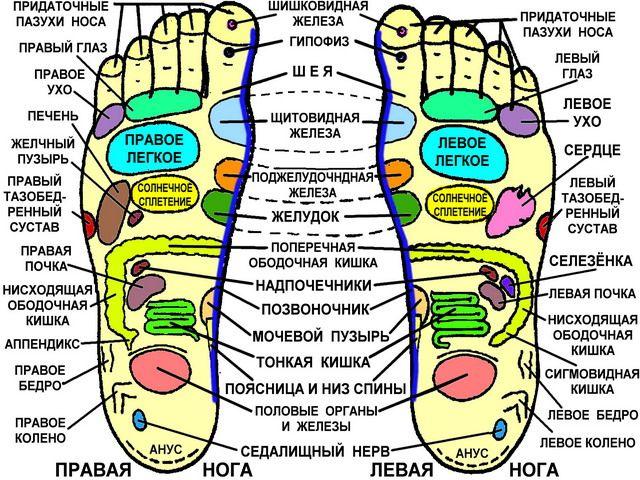 Массаж ног для здоровья, красоты и стройности