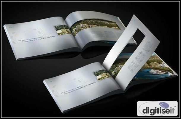 Digitise IT has the skills to offer finest quality of Brochure Designing…