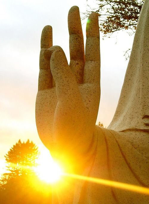 energy, balance, health, vitality surya ravi mudra