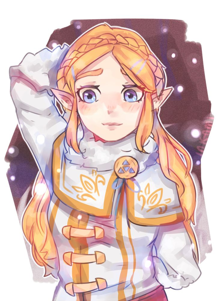 "ink-ami: ""Zelda's warm clothes : it's so pretty on her. If you don't know, this is the new Zelda's clothing we can see in the new DLC of Breath of the wild. """