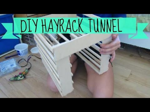 *Inspired By Imy's Animals* DIY Hay Rack Tunnel | For Guinea Pigs/Rabbits | Kat's Animal Channel - YouTube