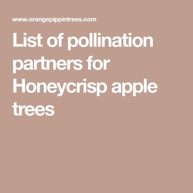 List of pollination partners for Honeycrisp apple trees