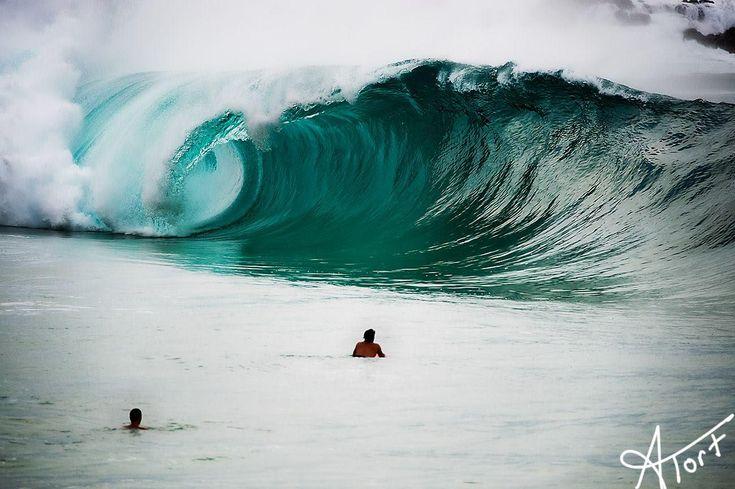 Waimea Bay Shore Break