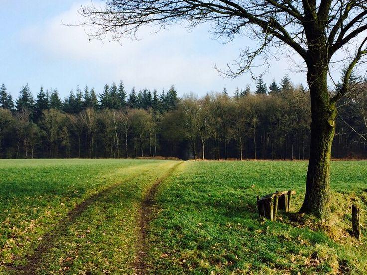 Prachtige plek tussen Eefde en Almen