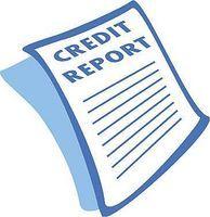 3 credit bureaus