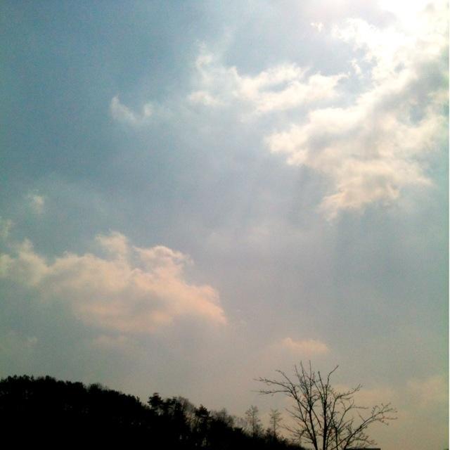 점심 하늘