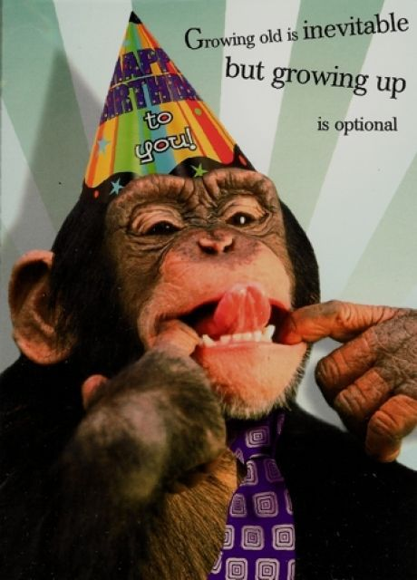 Happy Birthday to the Monkey in my life... PARIS!!! Lets Celebrate!!! Ha...