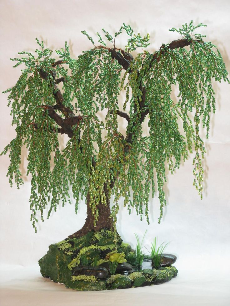 Wiring Bonsai Trees Instructions