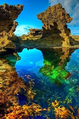 Back Beach, Sorrento, Mornington Peninsula, Australia