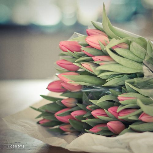 tulipsModern Gardens, Beautiful Flower, Brown Paper, Interiors Design, Flower Arrangements, Gardens Design, Pink Tulips, Design Posters, Flower Collection
