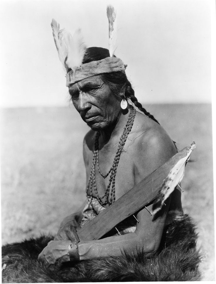 Fat Horse with Insignia of Blackfoot Soldier by Edward Sheriff Curtis
