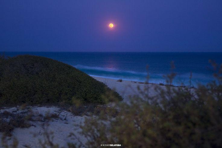 Full moon  #josafatdelatoba #cabophotographer #landscapephotography #loscabos #bajacaliforniasur #fullmoon #eastcape #sanjosedelcabo