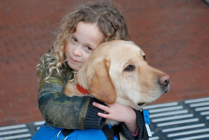 Onze honden zijn speciaal getraind voor een belangrijke taak zoals het buitenshuis begeleiden van jonge kinderen met autisme. Lees meer over de autismegeleidehond.